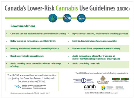 Cannabis Lower Risk guidelines infographic